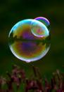 2 Bubbles Piggyback (courtesy of Heather Scott Photography