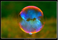 Giant Bubble (photograph by Heather Scott Photography)